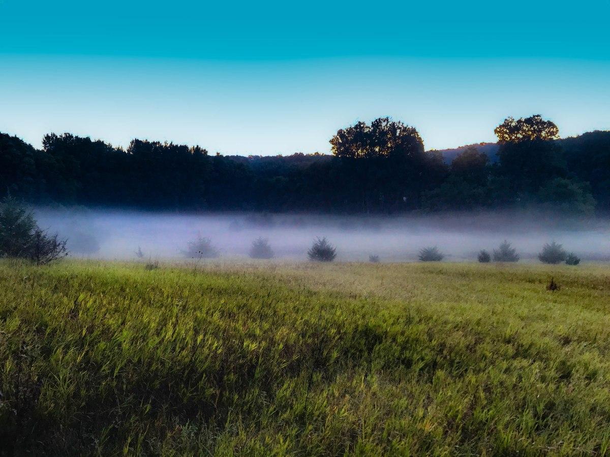 Brushy Creek State Recreation Area – SouthernLegs